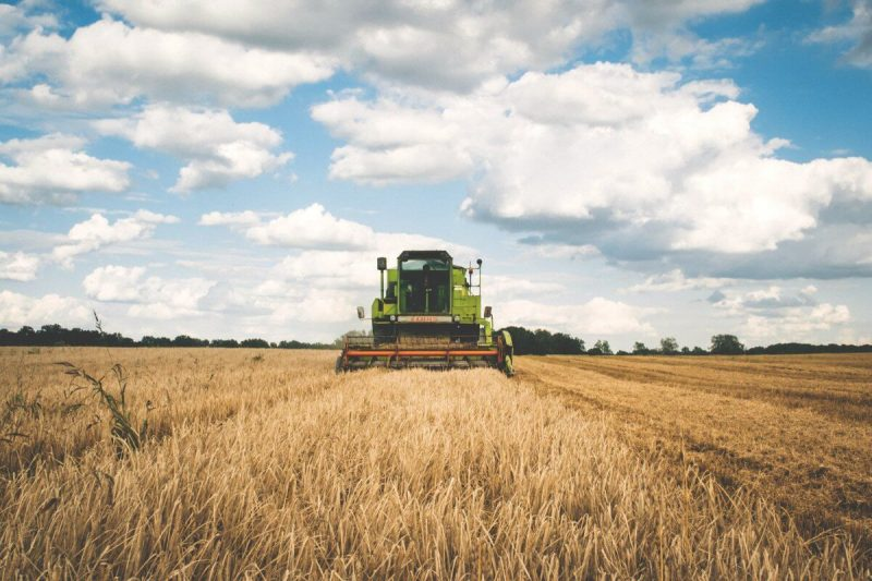 """LAG ADRION: Objavljen prvi LAG natječaj za tip operacije: 2.1.2. """"Potpora razvoju malih poljoprivrednih gospodarstava"""""""