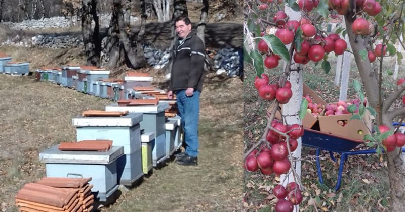 """Primjer dobre prakse s 3. nacionalnog natječaja podmjere """"Potpora razvoju malih poljoprivrednih gospodarstava"""" – OPG Budić Toma"""